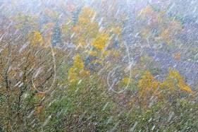 """Pointillisme""-Tempête de neige."
